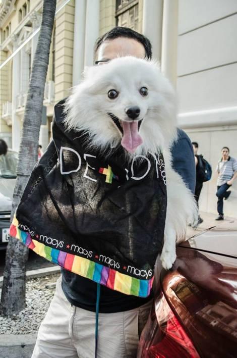 Orgullo LGBT Gay Ecuador Guayaquil 2015 - Asociación Silueta X (35)